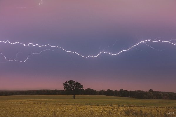 lightning strike over soybean field