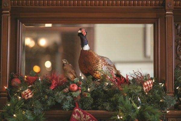 """A gamecock, found at a """"backwoods"""" auction, sits proudly among the greenery on the fireplace mantle in the game room."""