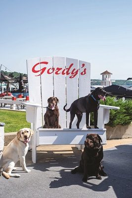 Jersey, Bailey, Bozeman & Brody