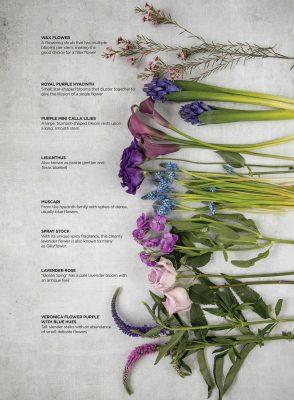 51_FloralFeature(1)