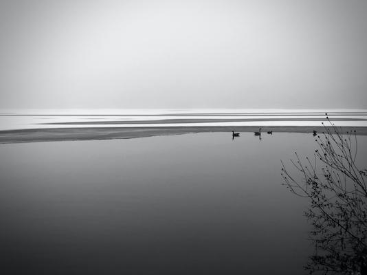 Williams Bay - Natalie Sliwinski